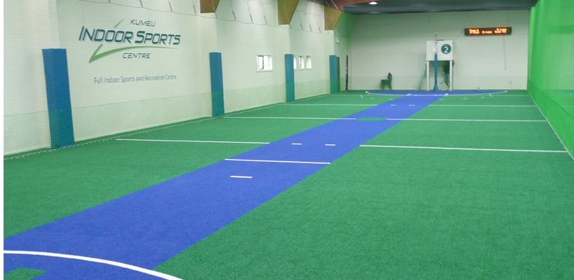 Teamturf Artificial Turf Sports Cricket Turf