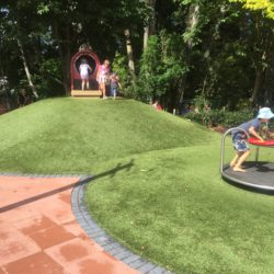 Hamilton Gardens turf 4
