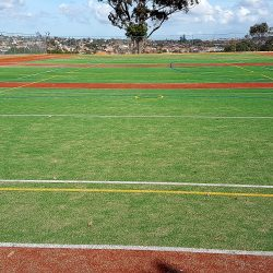 Teamturf Howick College artificial turf surfaces for sport, play and home New Zealand howick college 5
