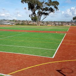 Teamturf Howick College artificial turf surfaces for sport, play and home New Zealand howick college