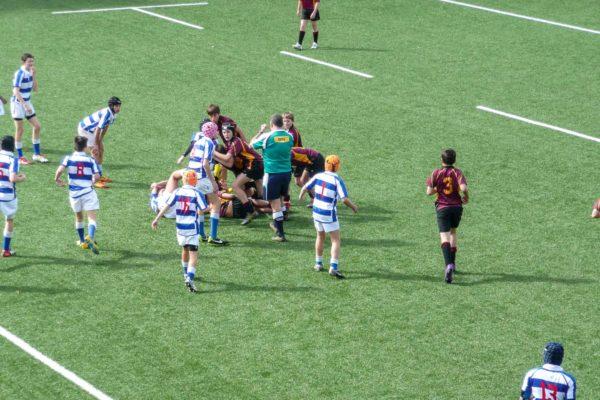 Kings School Rugby Turf Auckland