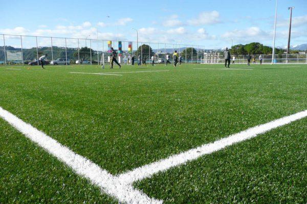 St Patricks Wellington Synthetic Soccer Turf