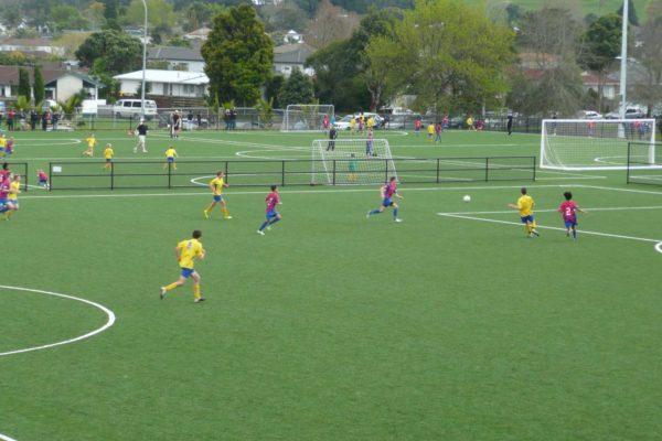 William Green Domain Soccer Turf