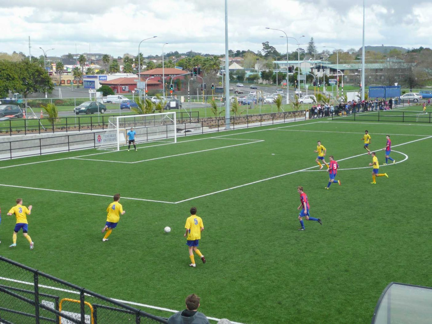 William Green Domain Soccer turf