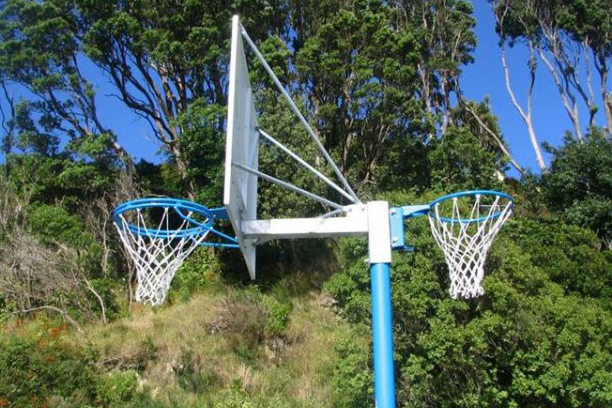 Reversible Basketball/netball Hoop