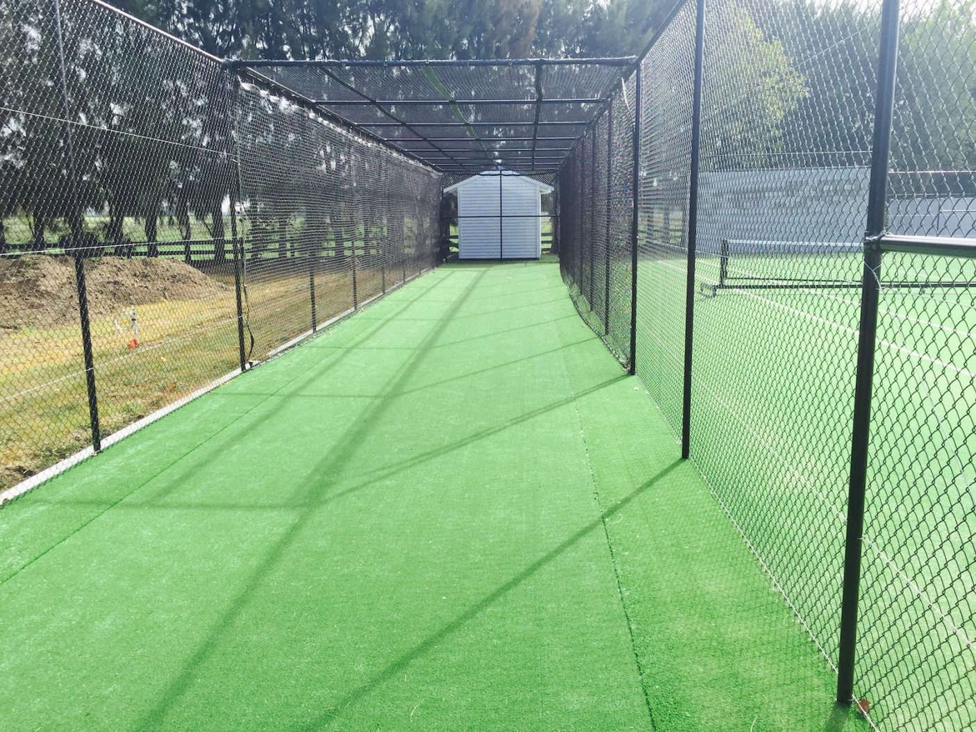 Cricket turf